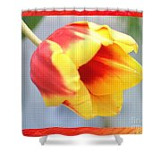 Bright Tulip Shower Curtain
