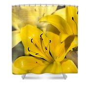 Bright Yellow Shower Curtain