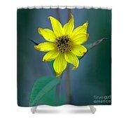 Bright Yellow Wildflower Shower Curtain