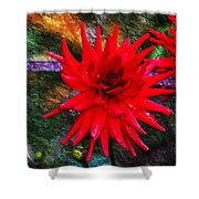 Brilliance In An Autumn Garden - Red Dahlia Shower Curtain