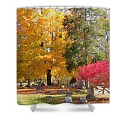 Brilliant Colors In The Cemetery  Shower Curtain