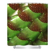 Brilliant Green Abstract 6 Shower Curtain