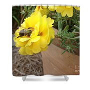 Brilliant Rose Flower With Buzzy Bee Shower Curtain
