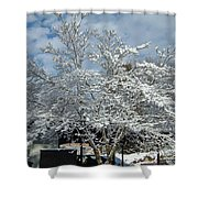 Brilliant Snow Coated Tree Shower Curtain