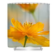 Bring Me A Little Sunshine Shower Curtain