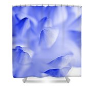 Bring Me Back To Life - Flower Petals Macro Shower Curtain