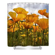Bring On The Poppies Shower Curtain