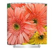 Bringing A Smile Shower Curtain