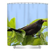 Bringing Home Dinner Shower Curtain