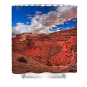 Bristlecone Guardian Shower Curtain