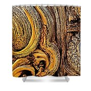 Bristlecone Pine Bark Detail White Mountains Ca Shower Curtain