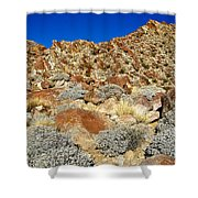 Brittlebush Leaves And Santa Rosa Mountains From Borrego Palm Canyon In Anza-borrego Desert Sp-ca Shower Curtain