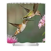 Broad Tails Shower Curtain