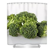 Broccoli Isolated Shower Curtain