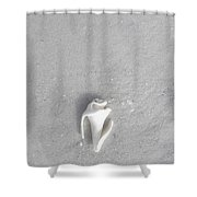 Broken And Alone Shower Curtain