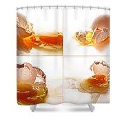 Broken Chicken Eggs Shower Curtain