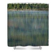 Broken Wood Shower Curtain