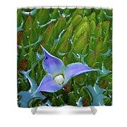 Bromeliad Pond Shower Curtain