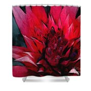 Bromeliad Splendor Shower Curtain