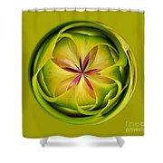 Bromiliad Orb Shower Curtain
