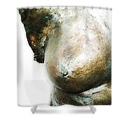 Bronze Bust 1 Shower Curtain