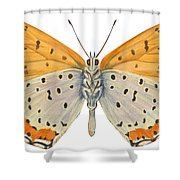 Bronze Copper Butterfly Shower Curtain