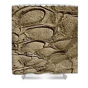 Bronze Mud Patterns 2 Shower Curtain