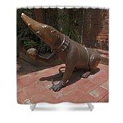 Bronze Statue Shower Curtain