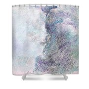 Brooding Sky Shower Curtain