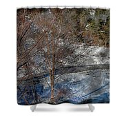 Brook And Bare Trees - Winter - Steel Engraving Shower Curtain