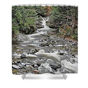 Brook In October Shower Curtain