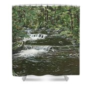 Brook In Spruceton Shower Curtain