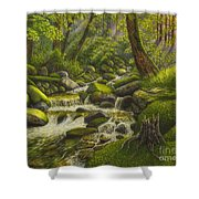 Brook In The Forest Shower Curtain