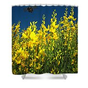 Broom And Carpenter Bee Shower Curtain