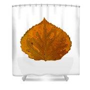Brown And Orange Aspen Leaf 1 Shower Curtain