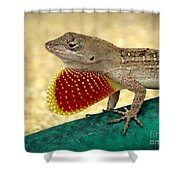Brown Anole Shower Curtain
