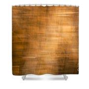 Brown Background Shower Curtain