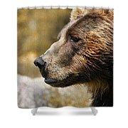 Brown Bear Golden Morning Shower Curtain