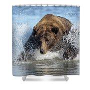 Brown Bear, Ursus Arctos, Fishing Shower Curtain
