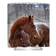 Snowing  Shower Curtain