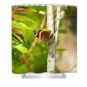 Brown Butterfly 2 Shower Curtain