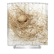 Brown Egg In Bird Nest Sepia Shower Curtain
