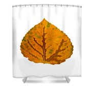Brown Green And Orange Aspen Leaf 1 Shower Curtain