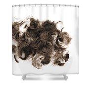 Brown Hair White Background Shower Curtain