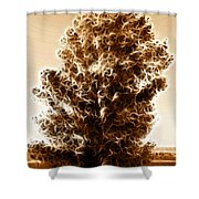 Brown Of Autumn Shower Curtain