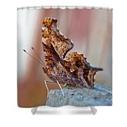 Brown Paper Moth Shower Curtain