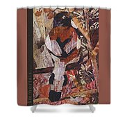 Brown- White Bird Shower Curtain