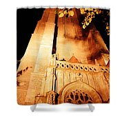 Brugge Cathedral At Night Shower Curtain