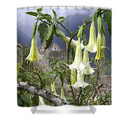 Brugmansia At Machu Picchu Shower Curtain