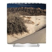 Brush In The Dunes Shower Curtain